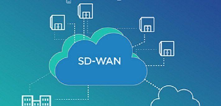 Las nuevas redes amplias y con software incluido.